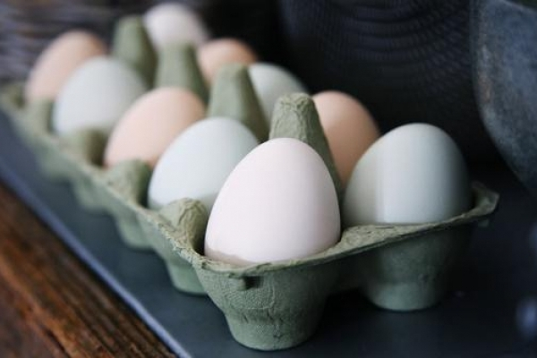 В Україні подорожчали яйця і м'ясо